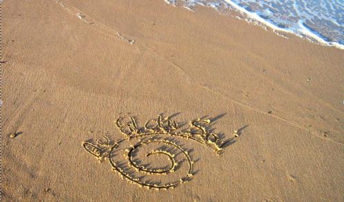 logos:plage.png